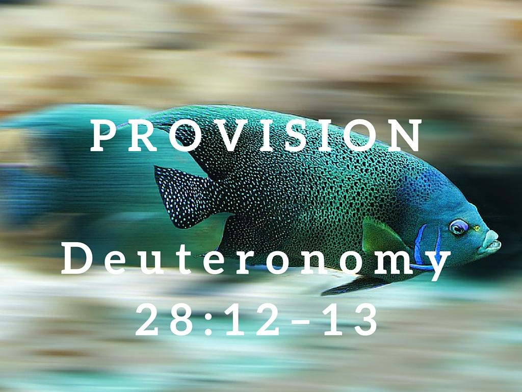 Deuteronomy 28:12–13