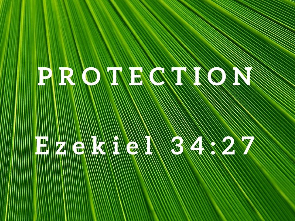 Ezekiel 34:27