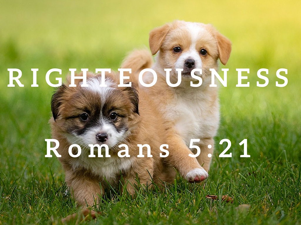 Romans 5:21
