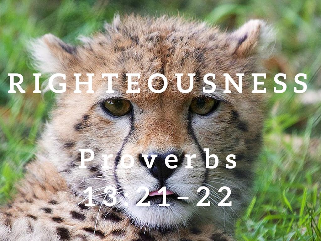 Proverbs 13:21–22