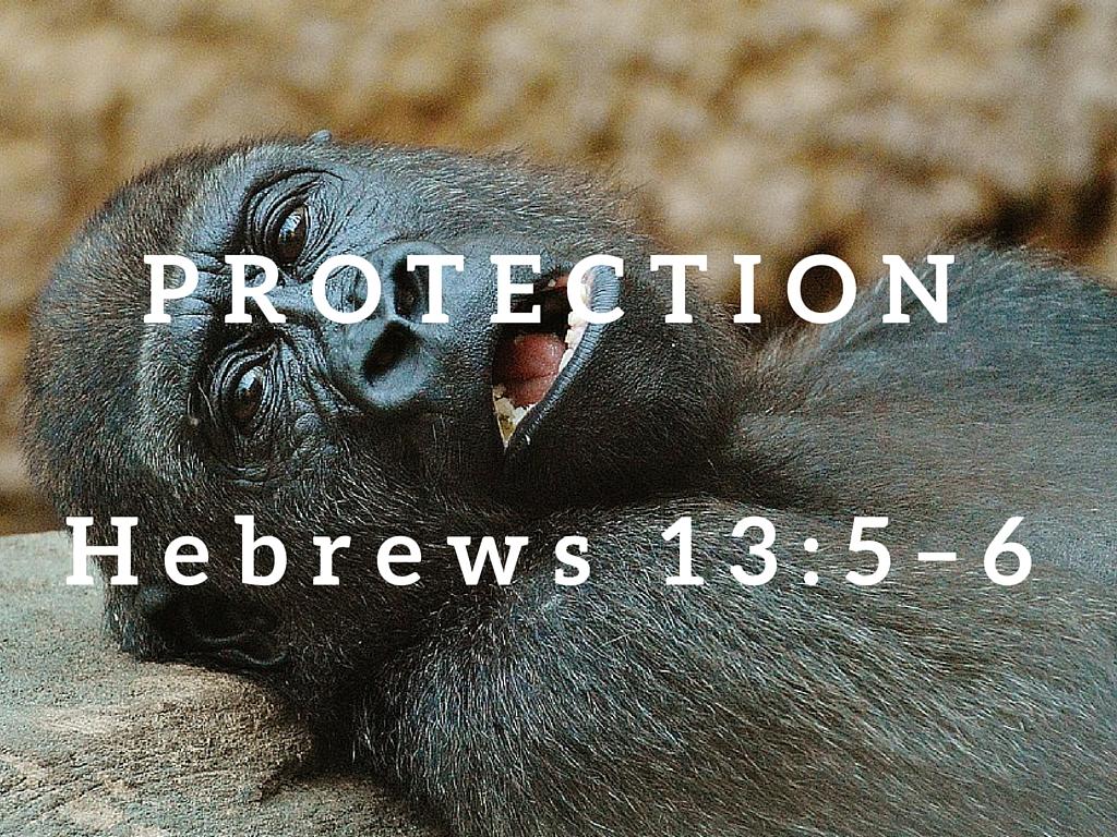 Hebrews 13:5–6